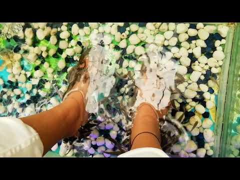 Fish Foot Spa Capital Mall Bhopal