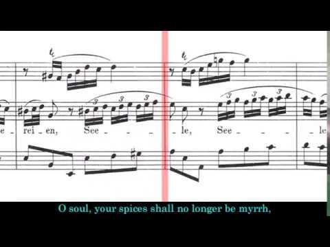 BWV 249 - Easter Oratorio (Scrolling)