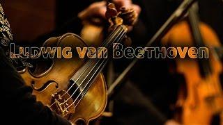 Ludwig van Beethoven  Sonata № 5 Spring F  Dur Op 24 I  Allegro Бетховен Соната№5