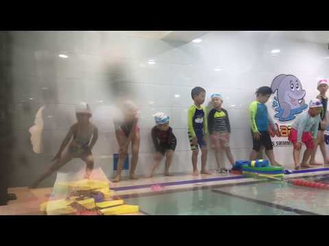 Marine Crew (Kids swimming school)