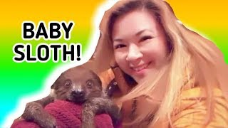 I met a baby sloth - so funny and cute! Absolutely adorable! SUBSCR...