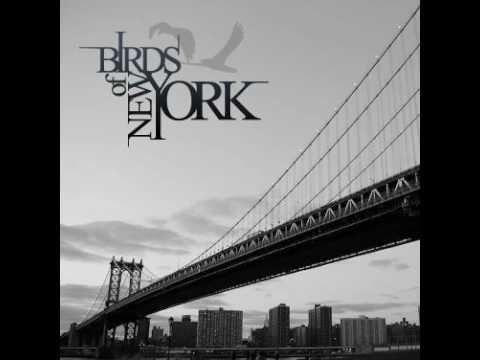 Birds of New York - Incandescent World mp3