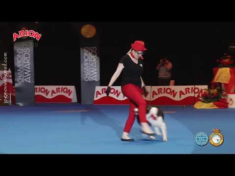 Exh. Dog Dancing   EXP. INT. CANINA de PRIMAVERA  MADRID 2018