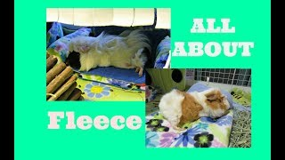 Are You Using Fleece Bedding Properly?