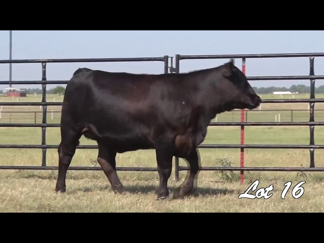 Pollard Farms Lot 16