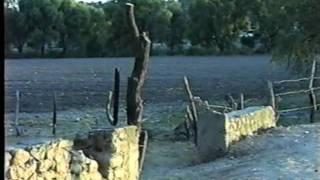 El Corrido de San Juanico de Abajo  (Villa Hidalgo, Jalisco)