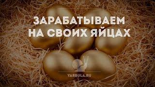 КАК ПОЛУЧИТЬ КЭШ ПОИНТЫ? СУПЕР ТАКТИКА! RICH BIRDS-зарабатывай на своих яйцах