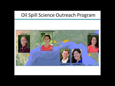 Seminar overview: Responding to oil spills: Offshore and deep sea habitats