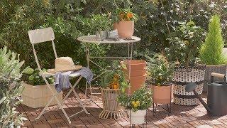 Cómo Decorar Tu Terraza O Balcón Con Plantas By El Mueble