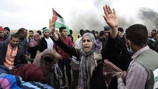 Download Video Lagu untuk Palestina MP3 3GP MP4