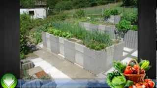 Home Vegetable Gardening Tips and Ideas For Beginners