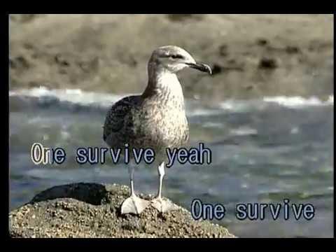 中島美嘉 - ONE SURVIVE (KY 42366) mp3