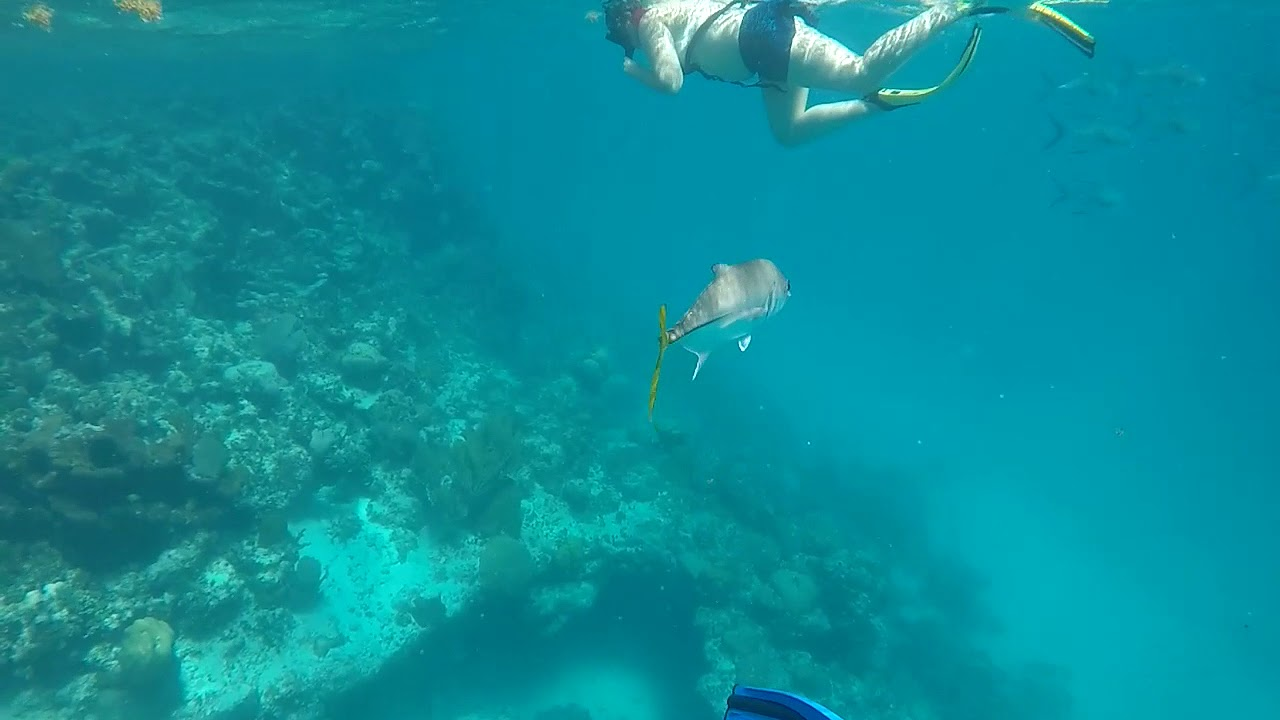 First Time Snorkeling
