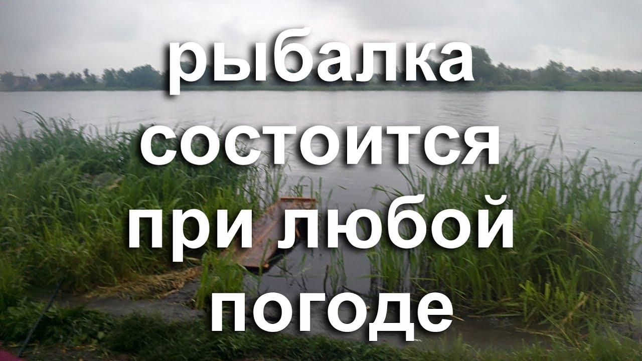 дождь и ветер не помеха для рыбалки/крупный карась