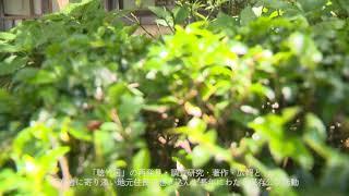 【2018年日本建築学会賞(業績)】「聴竹居」の再発見・調査研究・著作・広報と所有者に寄り添い地元住民を巻き込んだ長年にわたる保存公開活動
