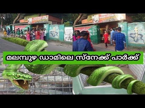 malampuzha മലമ്പുഴ ഡാമിലെ സ്നേക്ക് പാർക്ക് Malampuzha Snake park palakkad