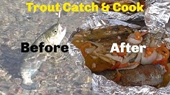 Trout Catch and Cook at Willow Beach Arizona