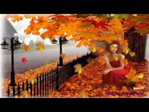 Happy fall season greetingsrelaxing musicpics falling colourful happy fall season greetingsrelaxing musicpics falling colourful golden leaves m4hsunfo Image collections