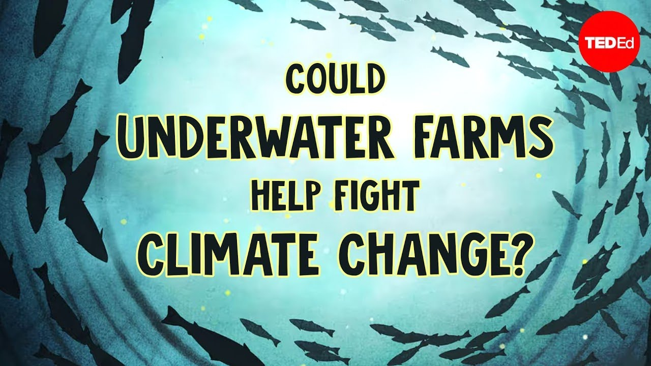 Could underwater farms help fight climate change? - Ayana Johnson and Megan Davis