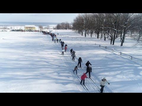 Новости Тетюшского муниципального района от 15 февраля 2019 года
