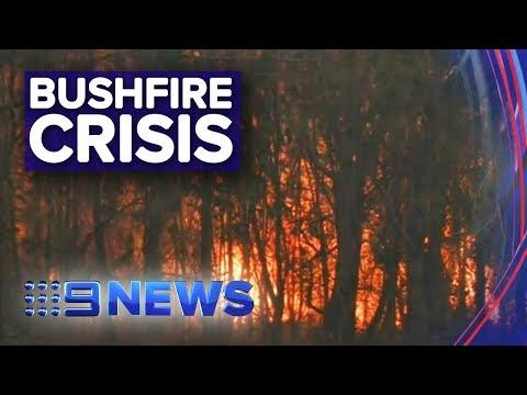 Seven People Killed In NSW Bushfires | Nine News Australia