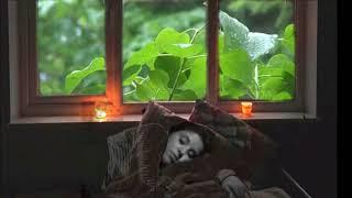 صوت المطر و الرعد للنوم للإسترخاء The sound of rain and thunder to sleep to relax