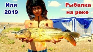 Рыбалка на реке Или 2019!!! Сазан, лещ, вобла, карась. Разведка новых мест