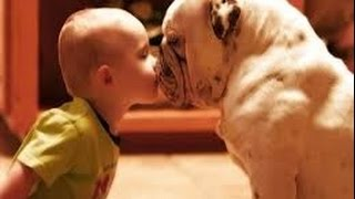 Humanity Of Animals - Faith In Humanity Restored - Cute Kids And Animal Friendship Compilation