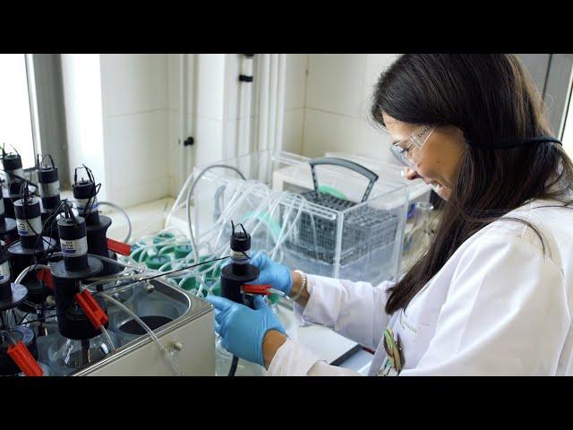 La recompensa de trabajar en investigación dura para toda la vida | Elena Díaz | Bio3