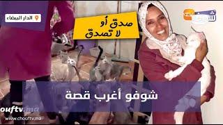 صدق أو لا تصدق..شابة مربية أكثر من 200 قط و70 كلبا وكتطلب باش توكلهم(شوفو أغرب قصة)