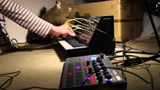 Electribe 2 and MS-20 Mini experimental techno jam.