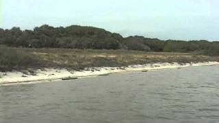 Aransas National Wildlife Refuge