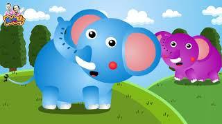 เพลง ช้าง ช้าง ช้าง เพลงเด็ก พี่นุ่น น้องภูมิ  -  KidsMeSong