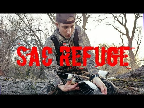 Sac Refuge Duck Hunt | 1.13.18