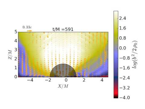 SMS collapse into SMBH magnetic pressure contour+velocity fields (MHD, zoomed in)