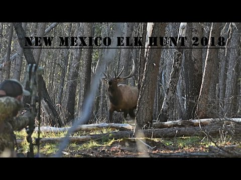 2018 New Mexico Archery Elk Hunting In The Backcountry! Big Bulls Down!- Part 1 Of 2