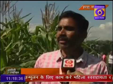 Ground Report Madhya Pradesh: Soil Health Card Scheme Harda