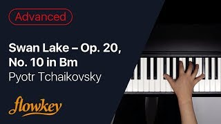 Swan Lake Op. 20, No. 10 in Bm – Pyotr Tchaikovsky