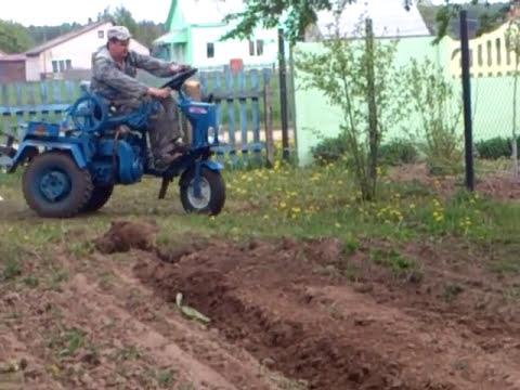 Первое окучивание картофеля после посадки мотоблоком.