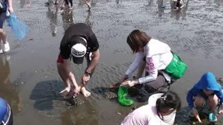 2017/04/30 千葉県木更津市久津間海岸.
