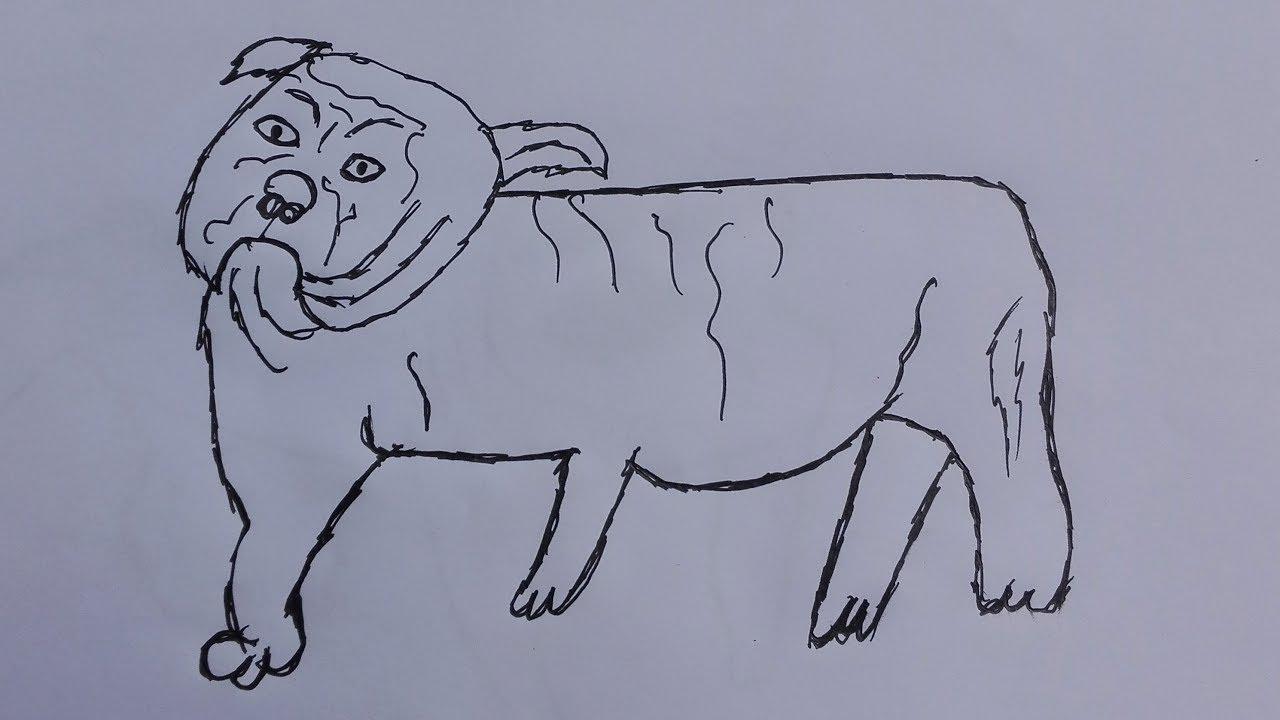 how to draw a bulldogdraw a bulldog facedraw a english