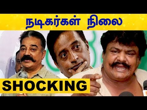 Election Results 2019 Status of Actors   Kamal   Mansoor Ali Khan   Seeman   Power Star   Tamil Nadu