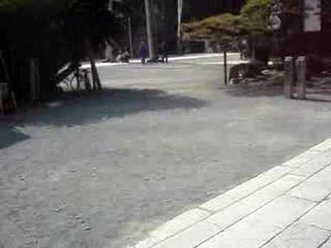 Day trip to Toyokawa Shrine in Aichi Prefecture