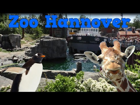 Zoo Hannover | Tiere und Themenwelten