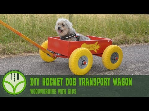 DIY Dog Transport Wagon (how to build) - woodworking with kids