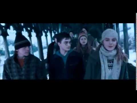 ⚡ The Story of My Life【HP Tribute】
