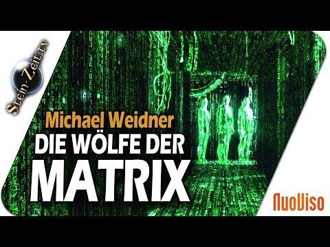 Die Wölfe in der Matrix - Matthias Weidner bei SteinZeit