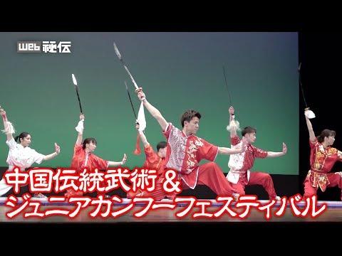 功夫百花繚乱! 「中国伝統武術&ジュニアカンフーフェスティバル」ダイジェストムービー