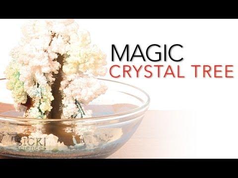 Magic Crystal Tree - Sick Science! #065