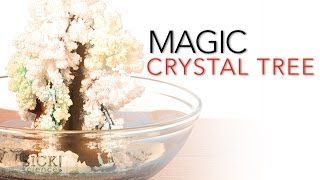 Magic Crystal Tree - Sick Science! #065